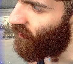 Medkirčio barzda