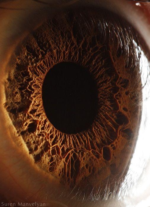 neitiketinos-zmoniu-akys-zmogaus-akis-tavo-akys-akis-akys-is-arti-12