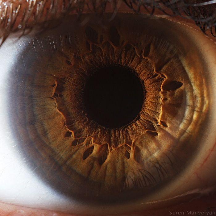 neitiketinos-zmoniu-akys-zmogaus-akis-tavo-akys-akis-akys-is-arti-15