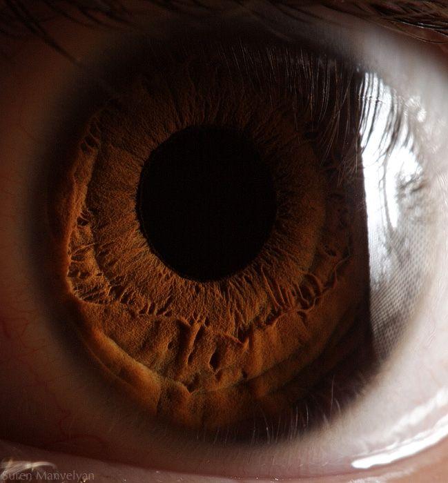 neitiketinos-zmoniu-akys-zmogaus-akis-tavo-akys-akis-akys-is-arti-19