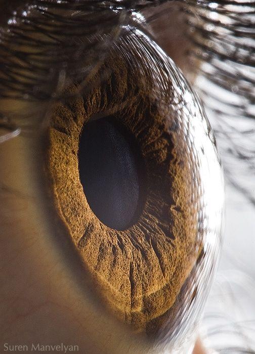 neitiketinos-zmoniu-akys-zmogaus-akis-tavo-akys-akis-akys-is-arti-2