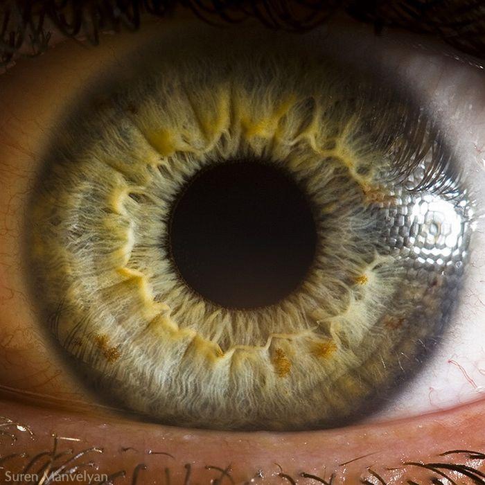 neitiketinos-zmoniu-akys-zmogaus-akis-tavo-akys-akis-akys-is-arti-5