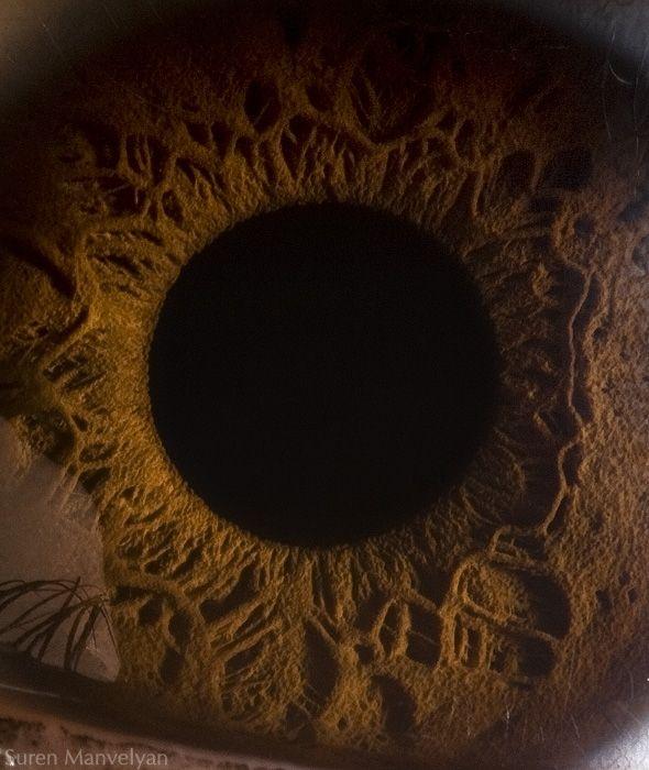 neitiketinos-zmoniu-akys-zmogaus-akis-tavo-akys-akis-akys-is-arti-7