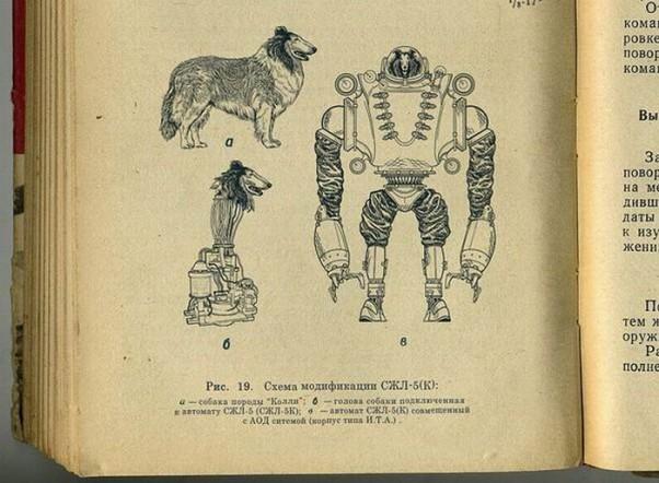 biorobotas-suo-kiborgas-robotas-karys-kareivis-biologinis-slaptas-projektas-sovietu-sajunga-3