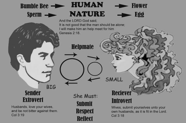 Vyro ir moters santykiai