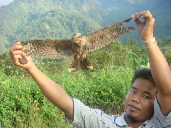 Jeatinga krentančių paukščių slėnis