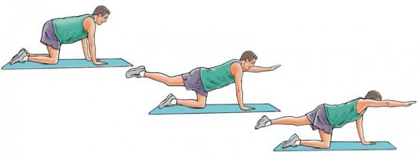 Pratimai nugaros raumenims stiprinti
